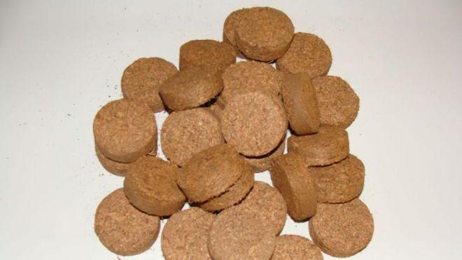 Кокосовые таблетки для рассады: как использовать?